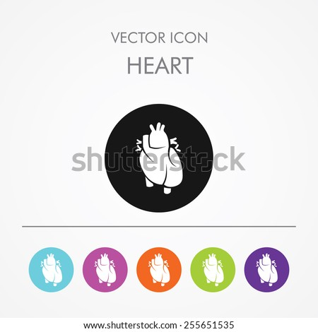 Very Useful Icon of human heart On Multicolored Flat Round Buttons. - stock vector