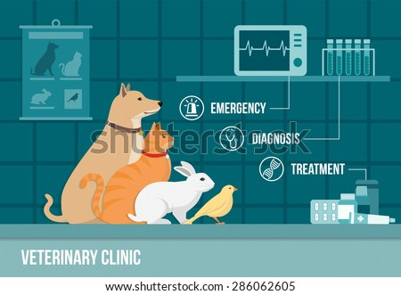 Veterinary clinic banner with dog, cat, rabbit, bird, medical equipment, drugs and icons set - stock vector