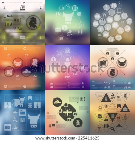 veterinary infographic with unfocused background - stock vector
