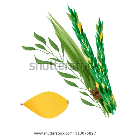 Vetor illustration of four species - palm, willow, myrtle , lemon - symbols of Jewish holiday Sukkot. Holiday of Sukkot  illustration. - stock vector