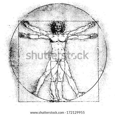 Vetruvian Man Human Anatomy Study By Stock Vector (Royalty Free ...