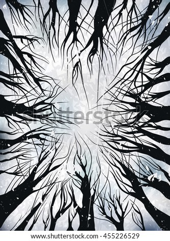 View up trees without leaves. black on white. vector illustration outline. Winter