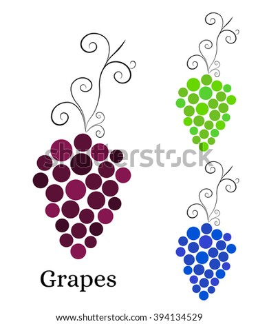 Vine with bunch of grapes. Logo for winery, wine store, wine menu. Round purple, green and blue grapes. Healthy eating. Vitamins for health. Vector illustration. - stock vector
