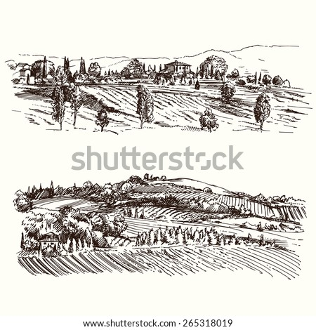 vineyard - hand drawn collection - stock vector