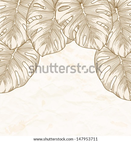 vintage background. Old crumpled paper with leaves Monstera with outline in the corner. Many similarities to the author's profile - stock vector