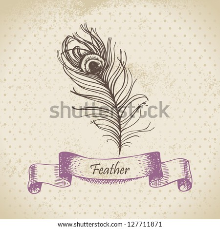 Vintage background with peacock feather. Hand drawn illustration - stock vector