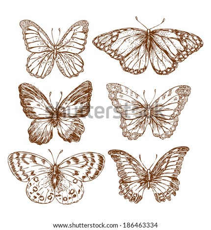 Vintage Butterflies Stock Vector 186463334