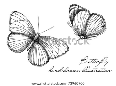 Vintage Butterfly Set - stock vector