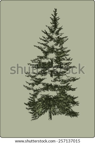 Vintage Christmas tree, hand-drawing. Vector illustration. - stock vector