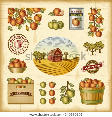 Vintage colorful apple harvest set. Fully editable EPS10 vector. - stock vector
