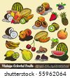 Vintage Colorful Fruits Collection - Set of Various Design Elements created from original hand draw - stock vector
