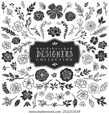 Vintage decorative plants and flowers collection. Hand drawn vector design elements - stock vector