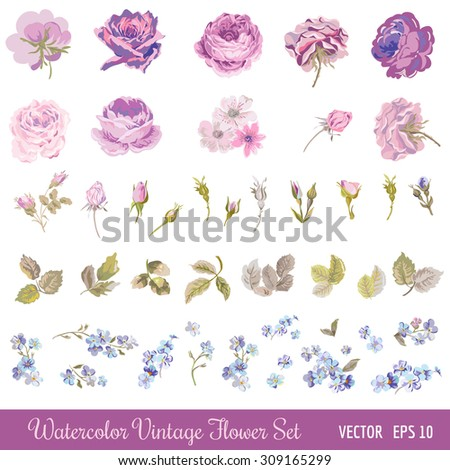 Vintage Flower Set - Watercolor Style - in vector - stock vector