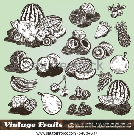 Vintage Fruits Collection - Set of Various Design Elements created from original hand draw - stock vector