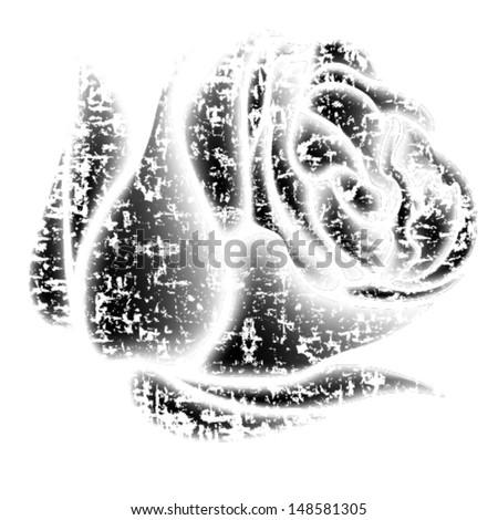 Vintage grunge flower. Vector rose element.  - stock vector