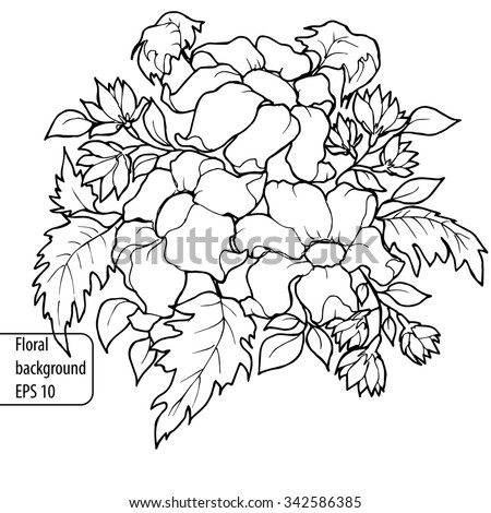 Vector Roses Trace Freehand Drawing Stock Vector 24179413 ...