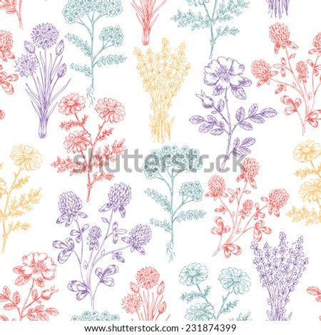 Vintage Hand Drawn Beauty Herbs Seamless Pattern - stock vector