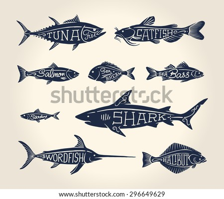 Vintage illustration of fish with names in tattoo style over white background - stock vector
