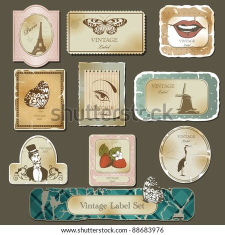 Vintage label  and old paper set - stock vector