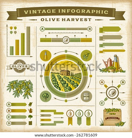 Vintage olive harvest infographic set. Editable EPS10 vector illustration with clipping mask. Easy to change the basic colors.