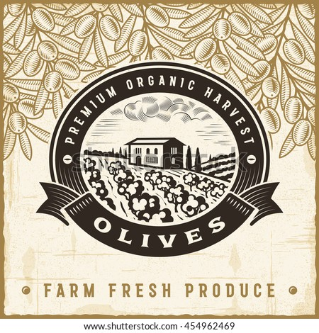 Vintage olive harvest label. Editable EPS10 vector illustration in retro woodcut style with clipping mask and transparency.