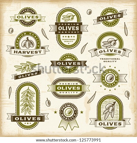 Vintage olive labels set. Editable EPS10 vector illustration. - stock vector