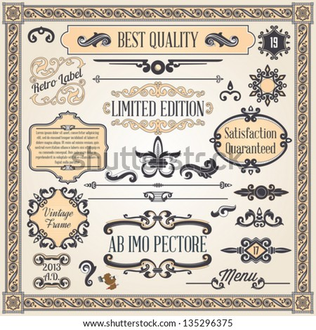 Vintage ornaments and frame, calligraphic design elements and page decoration - stock vector