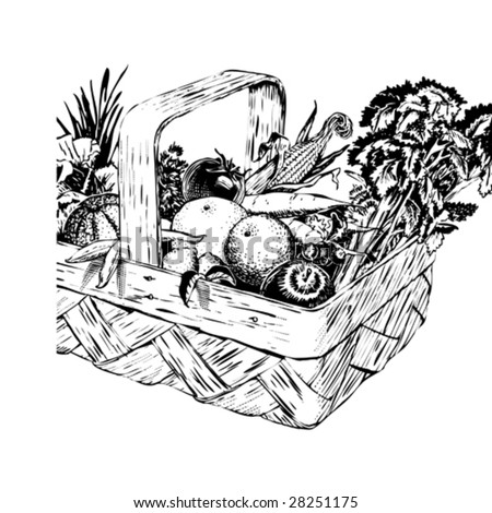 Vintage 1950s Harvest Basket of fruit and vegetables in a basket; detailed black and white from authentic hand-drawn scratchboard. Basket is complete. - stock vector