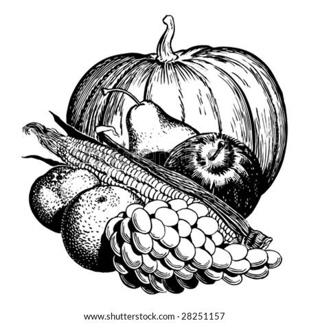 Vintage 1950s Harvest Fruit Vegetables Detailed Stock