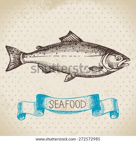 Vintage sea background. Hand drawn sketch seafood vector illustration of salmon fish - stock vector