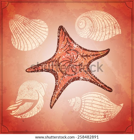 vintage starfish and seashells on the old paper vector illustration