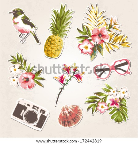 vintage things set-birds,tropical flowers,shell,sunglasses,camera on grunge background - stock vector