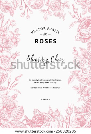 Vintage vector frame. Garden and wild roses. In the style of an old botanical illustration.