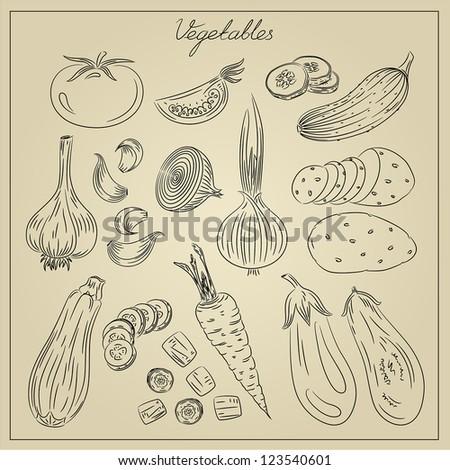 Vintage vegetables doodles illustration - stock vector