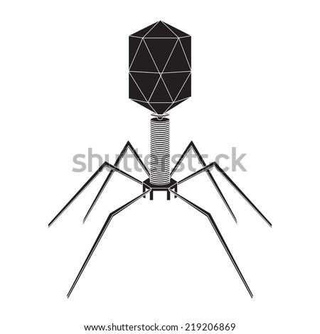 Virus bacteriophage model on a white background. Vector illustration. - stock vector