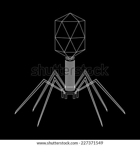 Virus bacteriophage schematic model on a black background. Vector illustration. - stock vector