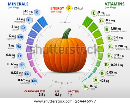 Vitamins and minerals of pumpkin. Infographics about nutrients in winter squash. Qualitative vector illustration about pumpkin, vitamins, vegetables, health food, nutrients, diet, etc - stock vector