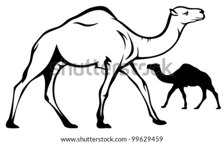 walking single-humped camel black and white outline - stock vector