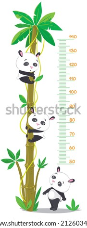 wall meter with big high palm and three funny pandas. Children vector illustration.