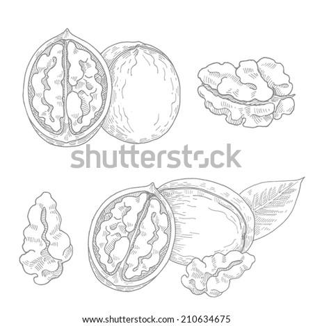 walnut draw set