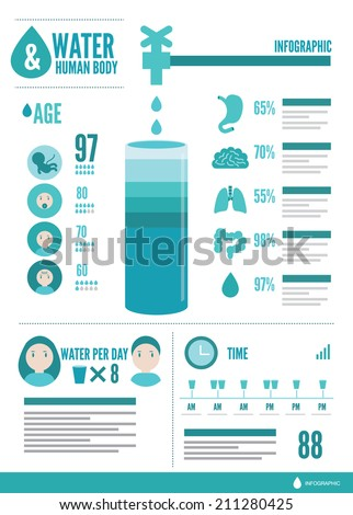 Water and human body info graphic. flat design vector - stock vector