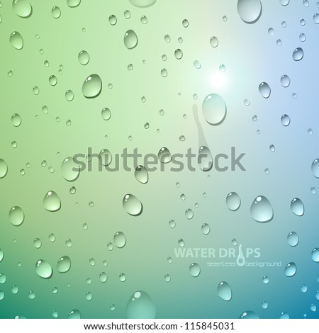 Water drops on glass. Vector illustration. - stock vector