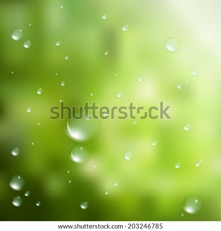 Water drops on green background. plus EPS10 vector file - stock vector