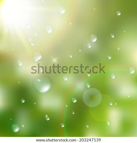 Water drops on green background. plus EPS10 vector file