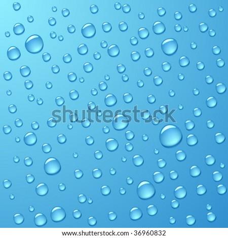 Water drops. Vector. - stock vector