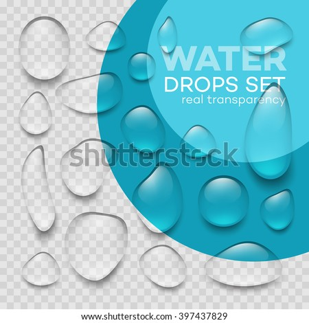 Water drops. Water drops on blue background. Realistic transparent Water drops.  Water drops isolated shape. Vector Water drops. Vector illustration EPS10 - stock vector