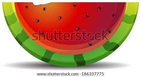 water-melon segment - stock vector