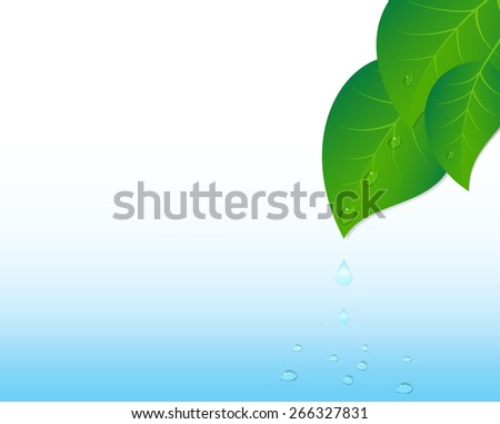 Water splash and leaves. Vector Illustration.  - stock vector