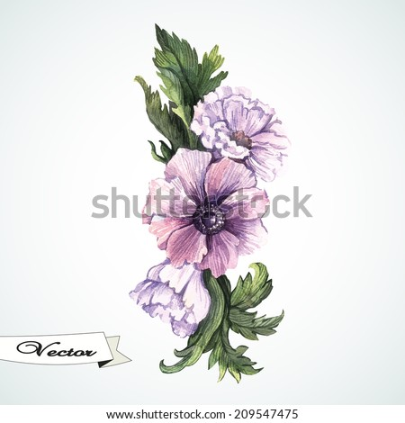 Watercolor anemones vector. Hand painting. Illustration for greeting cards, invitations, and other printing projects. - stock vector