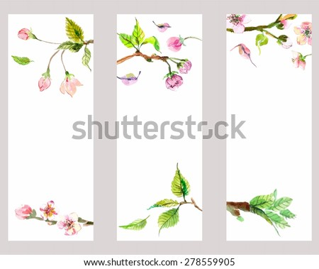 Watercolor apple flowers, beautiful background for design, banner set - stock vector